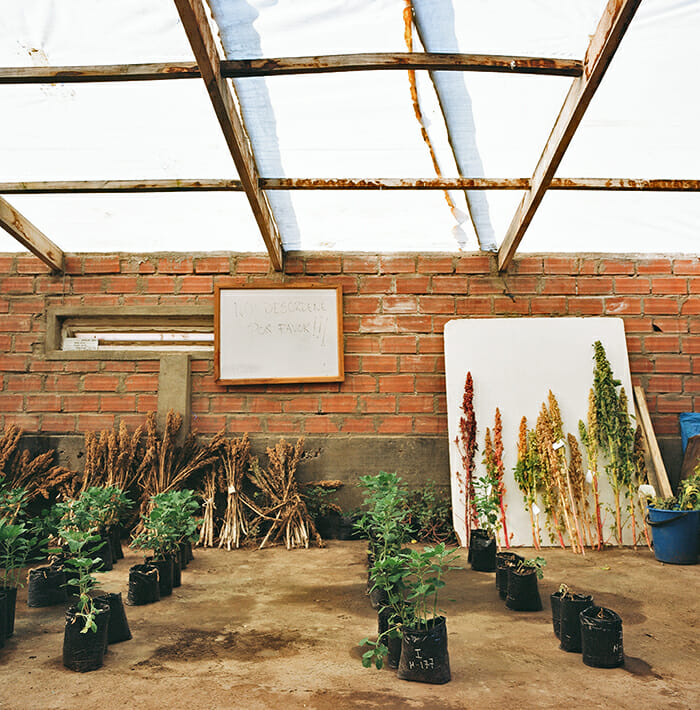 """A whiteboard reads NO DESORDENE POR FAVOR (""""Don't make a mess, please"""") inside the PROINPA greenhouse, where Bonifacio and his staff breed improved varieties of quinoa."""